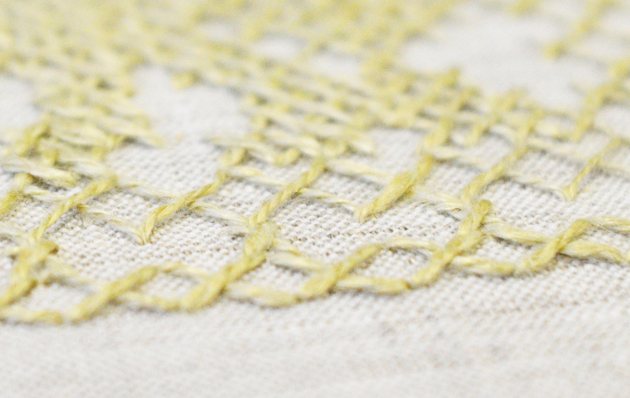 Manfred_Naescher__Edition_Ferdinand_Nigg_mit_den_Tieren_2015_Detail_Embroidery_on_Cover.jpg